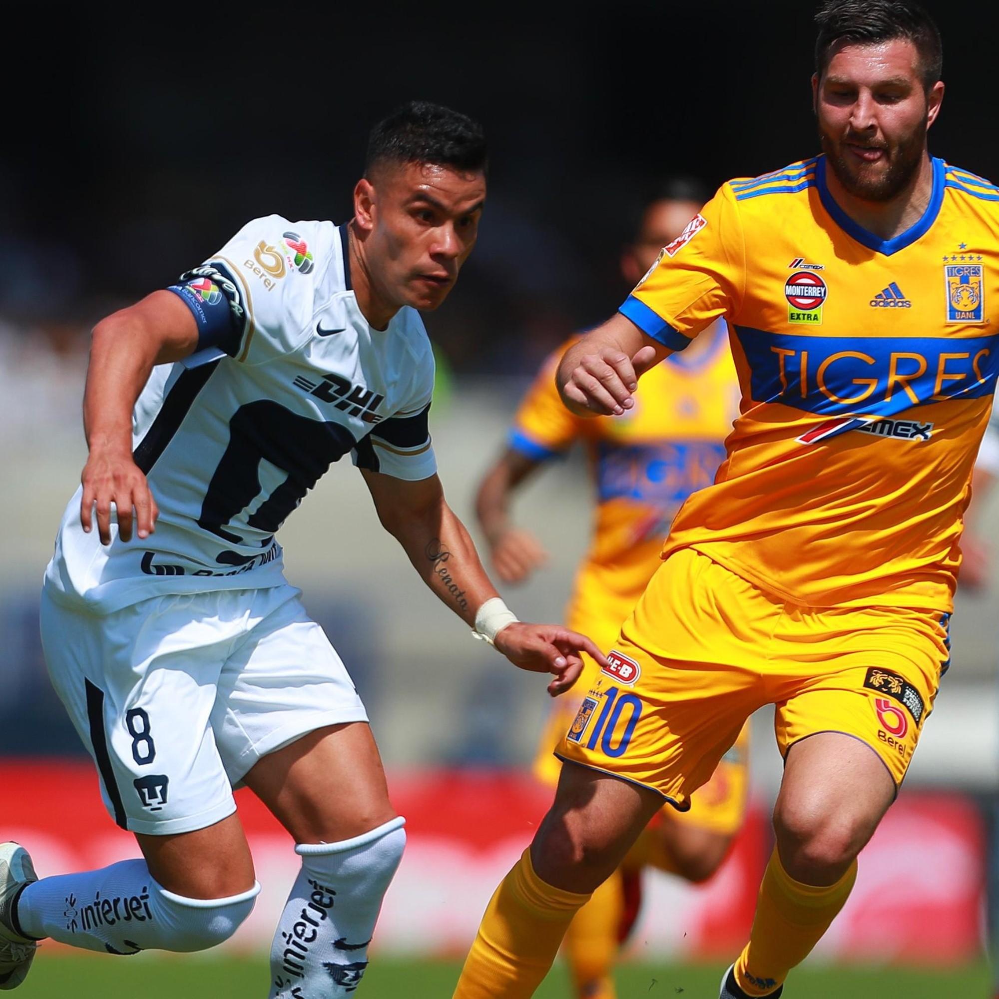 Maletín Propuesta alternativa arco  Qué canal transmite Pumas UNAM vs Tigres UANL por la Liga MX   Bolavip