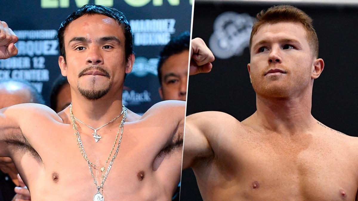 Los dos boxeadores que Juan Manuel Márquez ve mejores que a Canelo ...