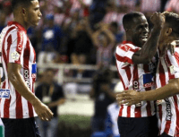Carmelo renovó con Junior y 'Teo' Gutiérrez se le burló en Instagram