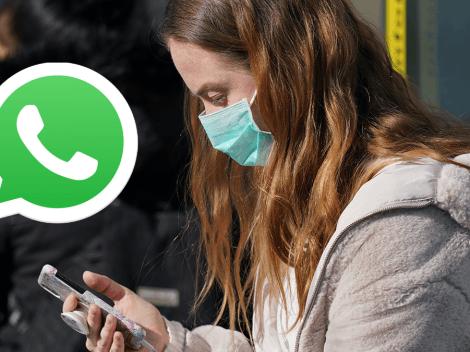 ¿Cómo crear tus propios stickers personalizados en WhatsApp?