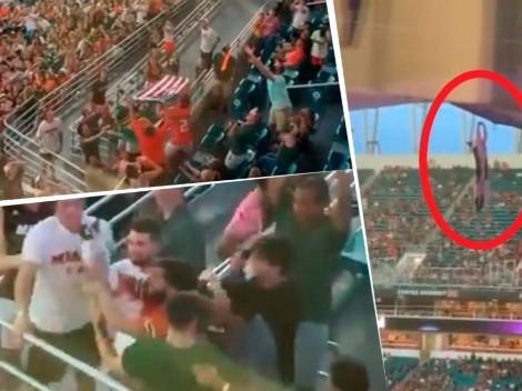 Video: hinchas en un estadio salvaron a un gato de un trágico final