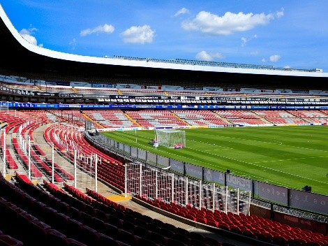 ¡Histórico! Querétaro permitirá que las mascotas asistan al estadio